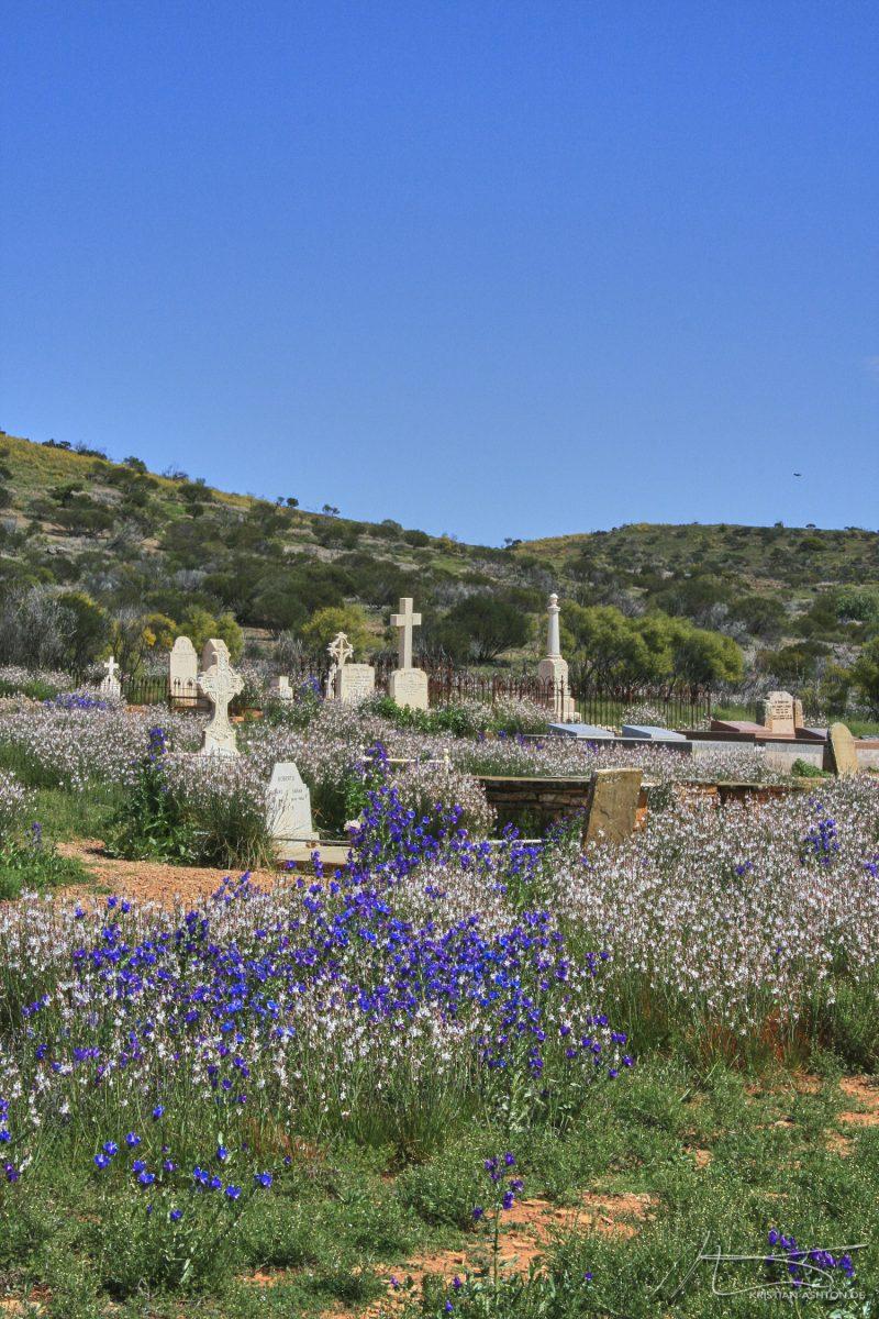 The Flinders Ranges - Blinman cemetery