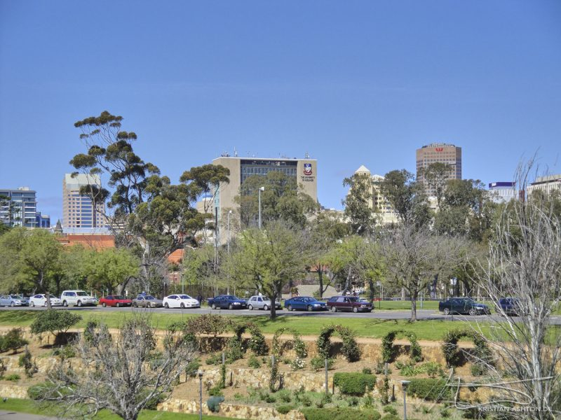View across to the University of Adelaide