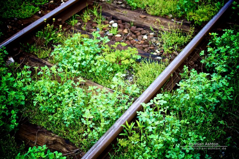 """Track"""