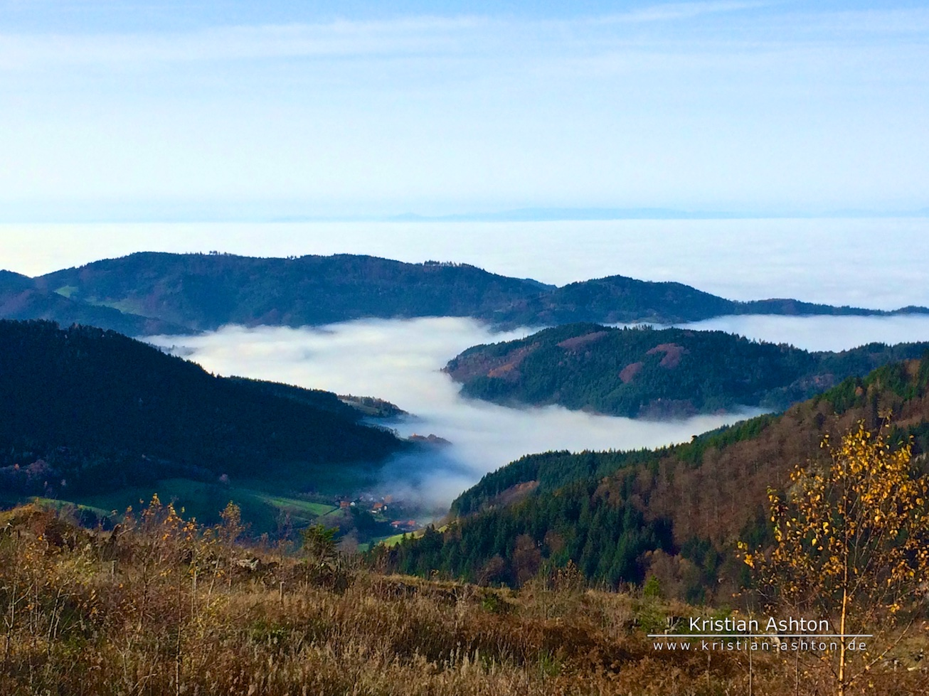"Black Forest ""High Road"" - inversion weather - not far from lake Mummelsee"