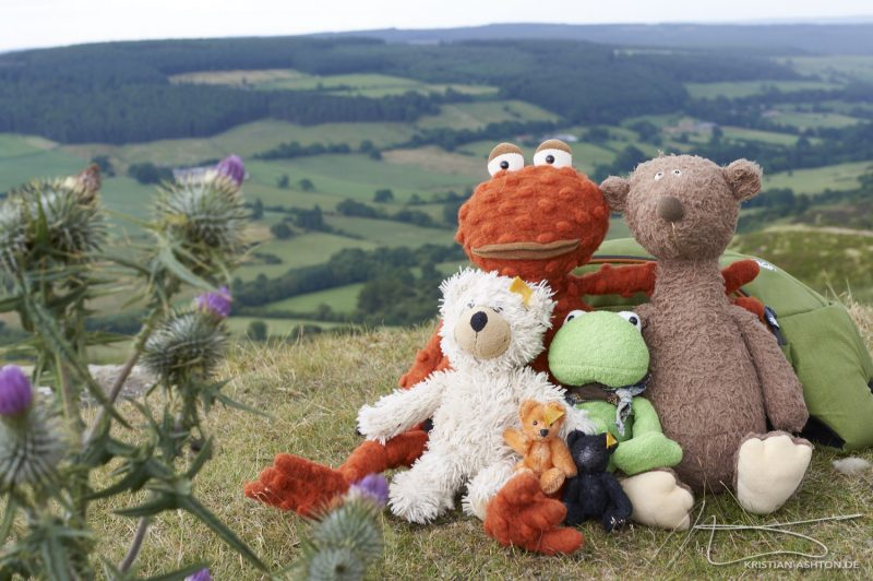 Rosedale Chimney Bank - the boys enjoy the beautiful view