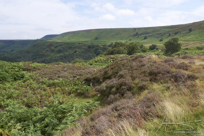 Hike on the North York Moors by Skelton Tower