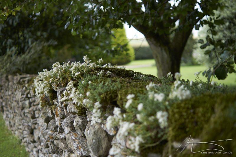 Levisham - a dry stone wall