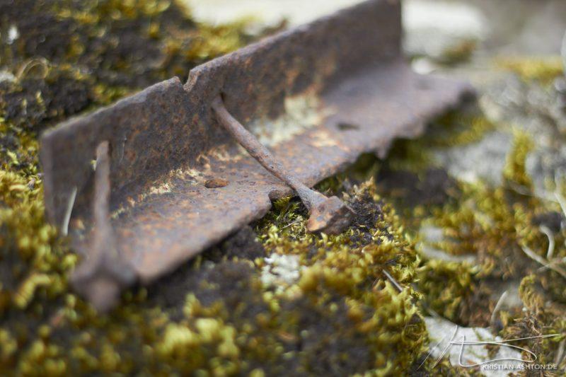 "Levisham - ""Iron on moss"""