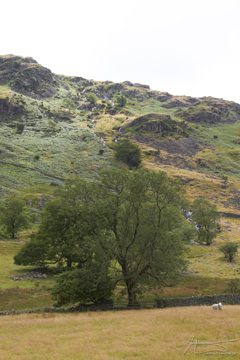 Lake District - near Thirlmere