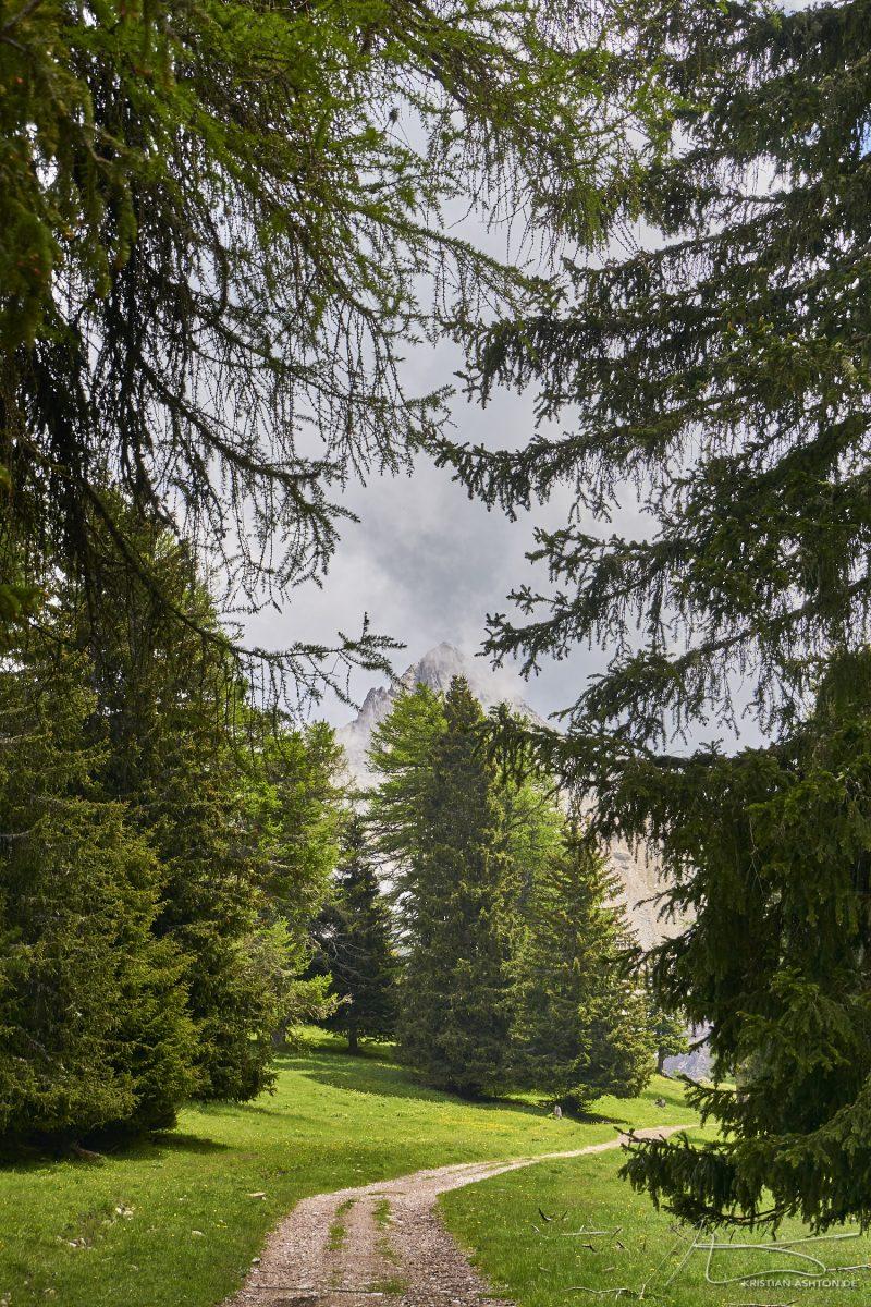 Alpine pasture hike
