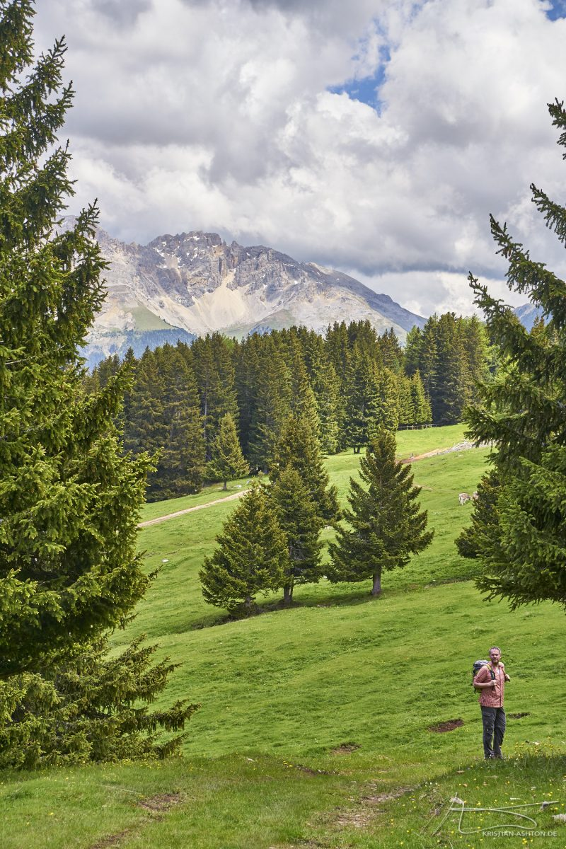 Ralph on an alpine pasture hike