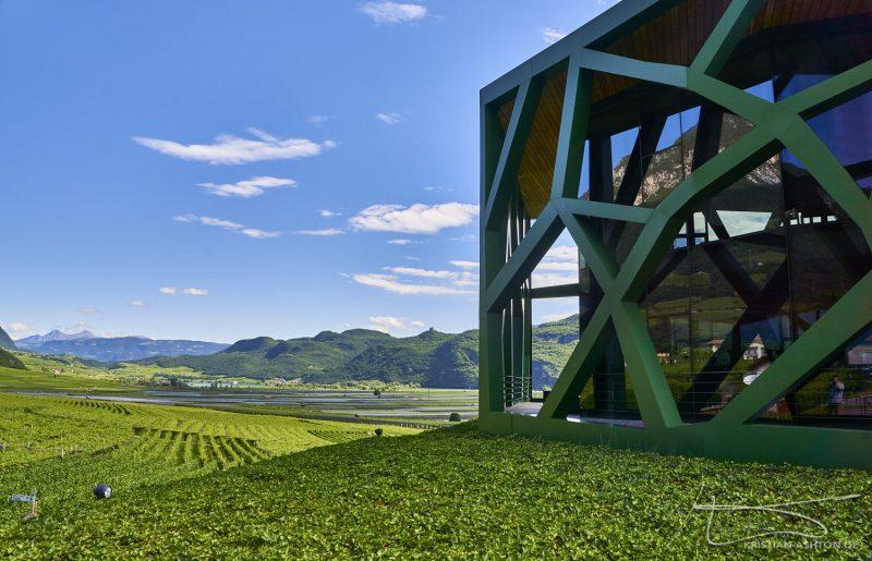 Tramin winery