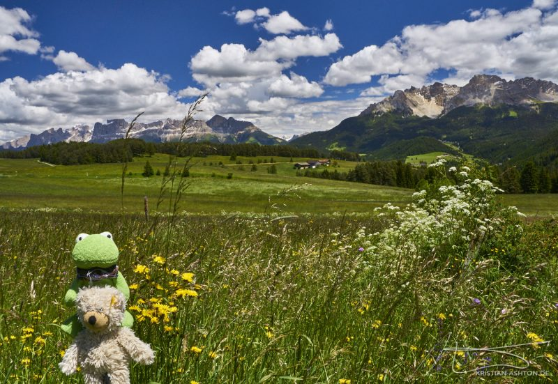 Mr Frog and Ralphy in front of the Rosengarten and Latemar