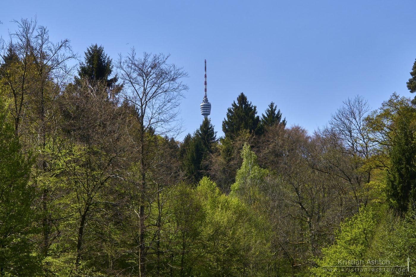 The television tower viewed from the Tiefenbachsee lake