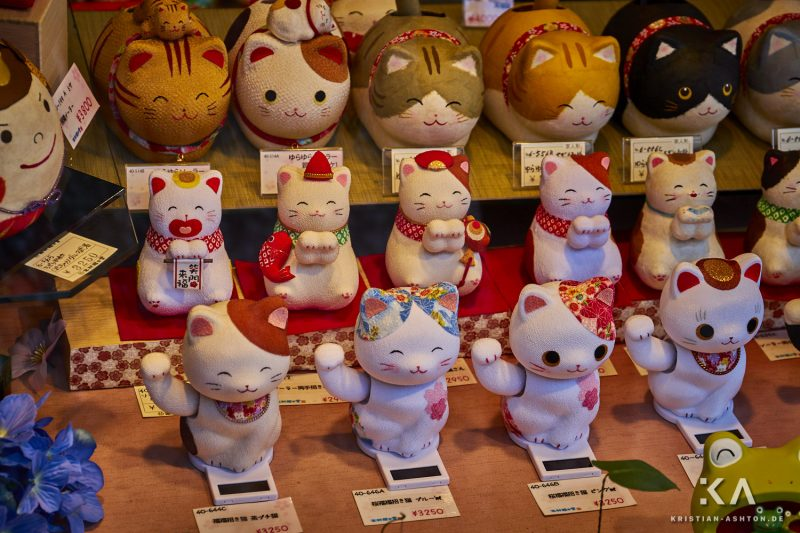 The streets of Higashiyama-ku - the Japanese love cats :)