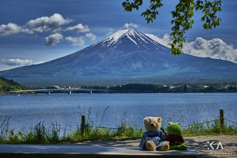 Ralphy and Mr Frog enjoy the view over Lake Kawaguchiko of the beautiful Fujisan (Mt. Fuji)