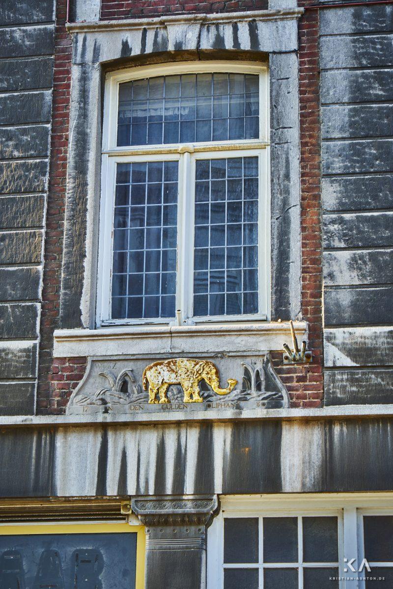 An elephant in Wycker Brugstraat