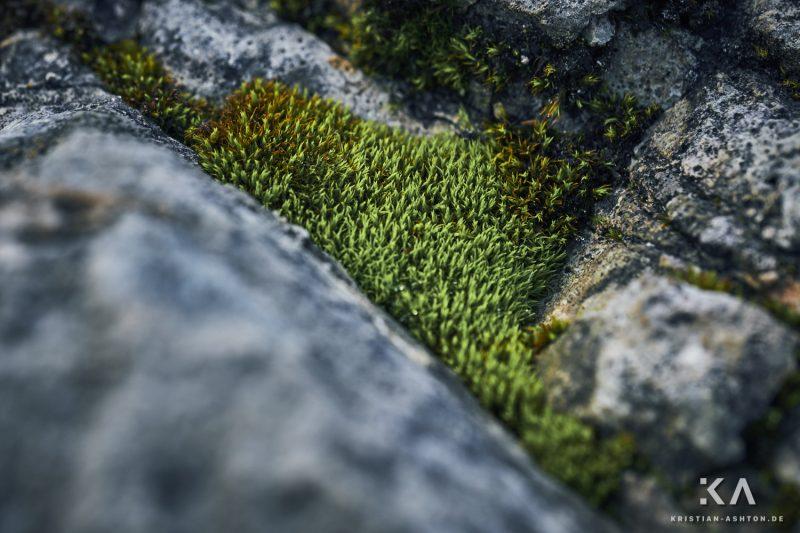 Hike in the Latemar Labyrinth-Climb